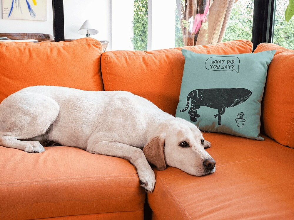 The Complete Guide to Starting a Decorative Pillow Business